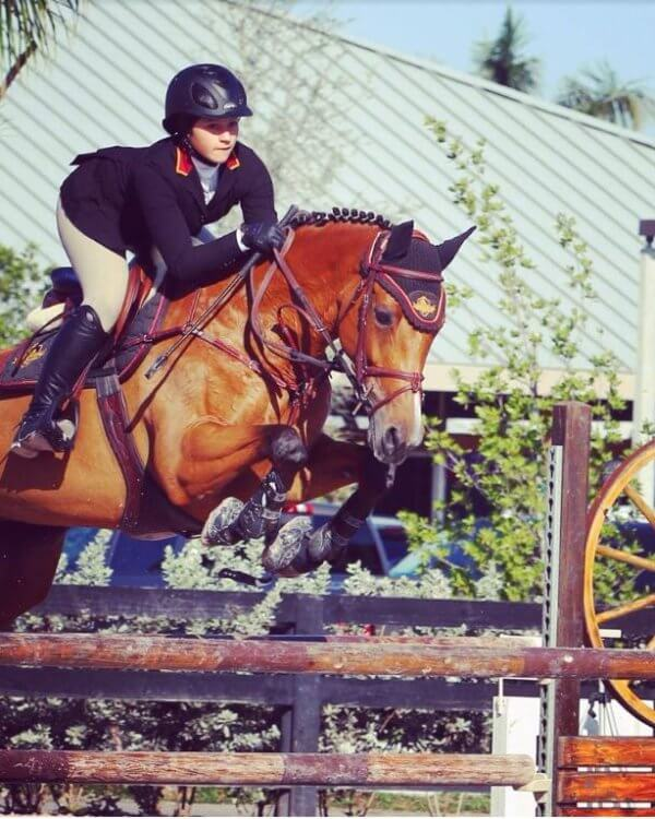 Equestrian on jumping horse