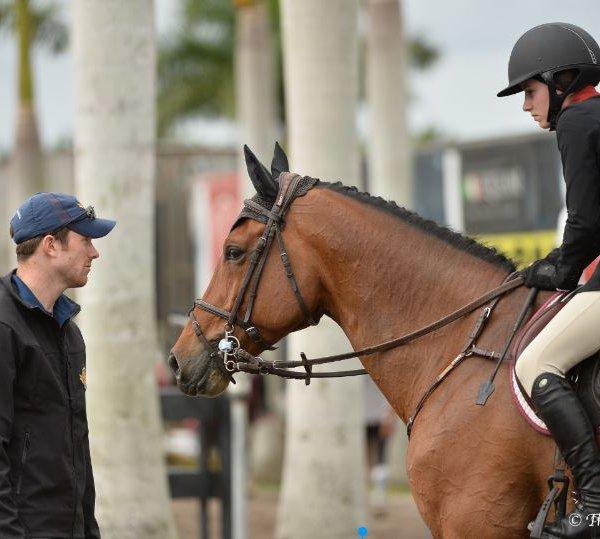 David Blake training horse rider