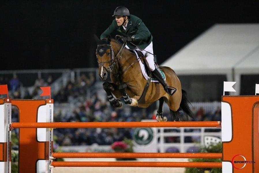 Horse jumping with David Blake