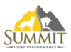 Summit Joint Performance logo